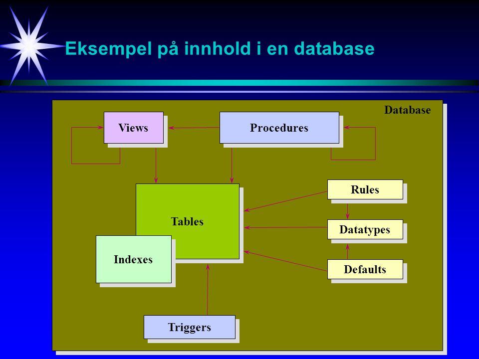 Eksempel på innhold i en database