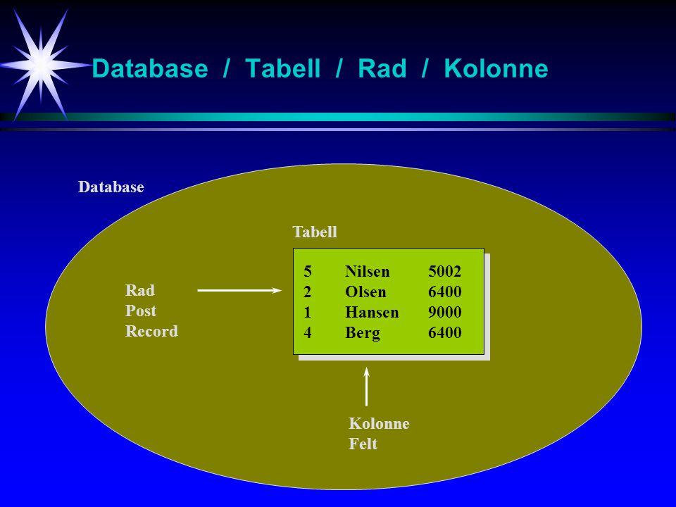 Database / Tabell / Rad / Kolonne