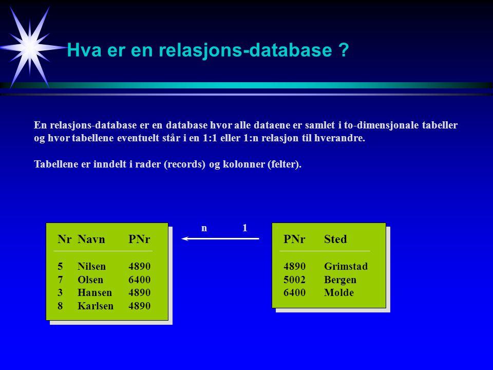 Hva er en relasjons-database
