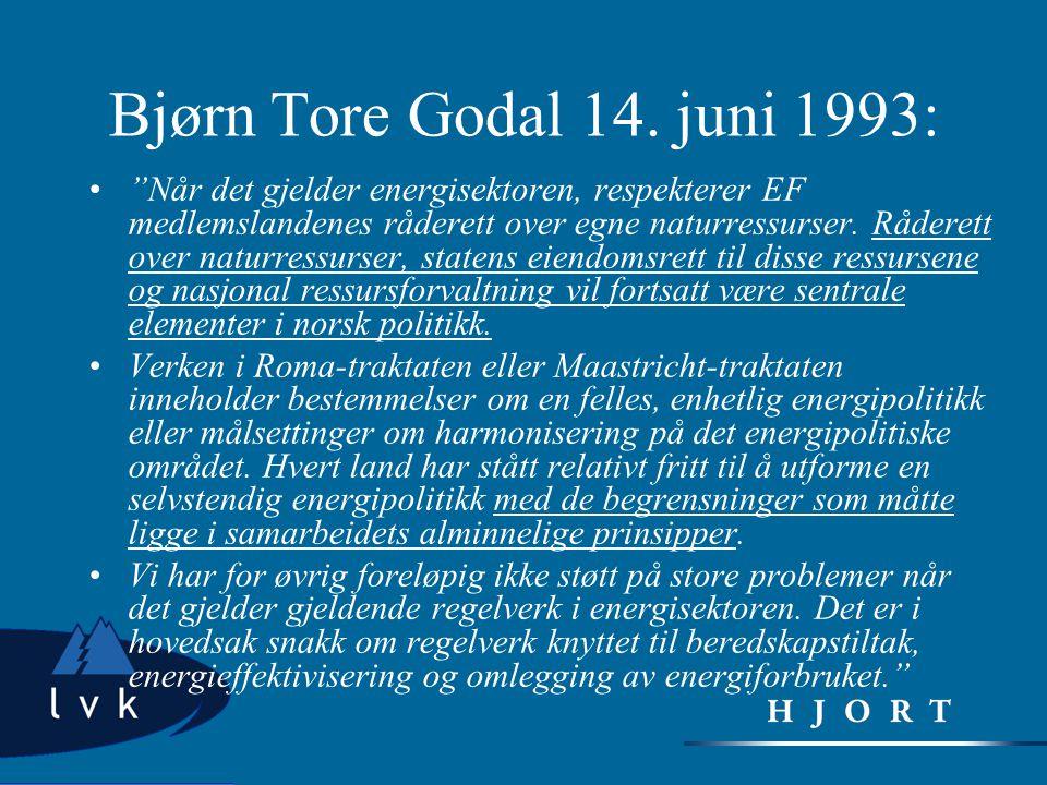 Bjørn Tore Godal 14. juni 1993: