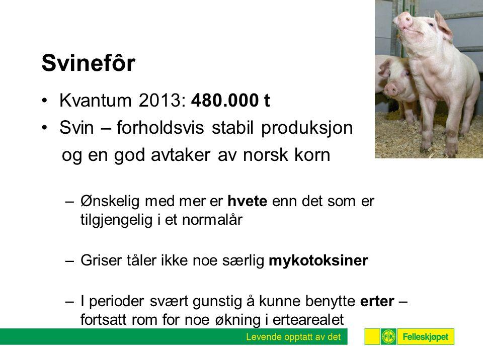 Svinefôr Kvantum 2013: 480.000 t Svin – forholdsvis stabil produksjon