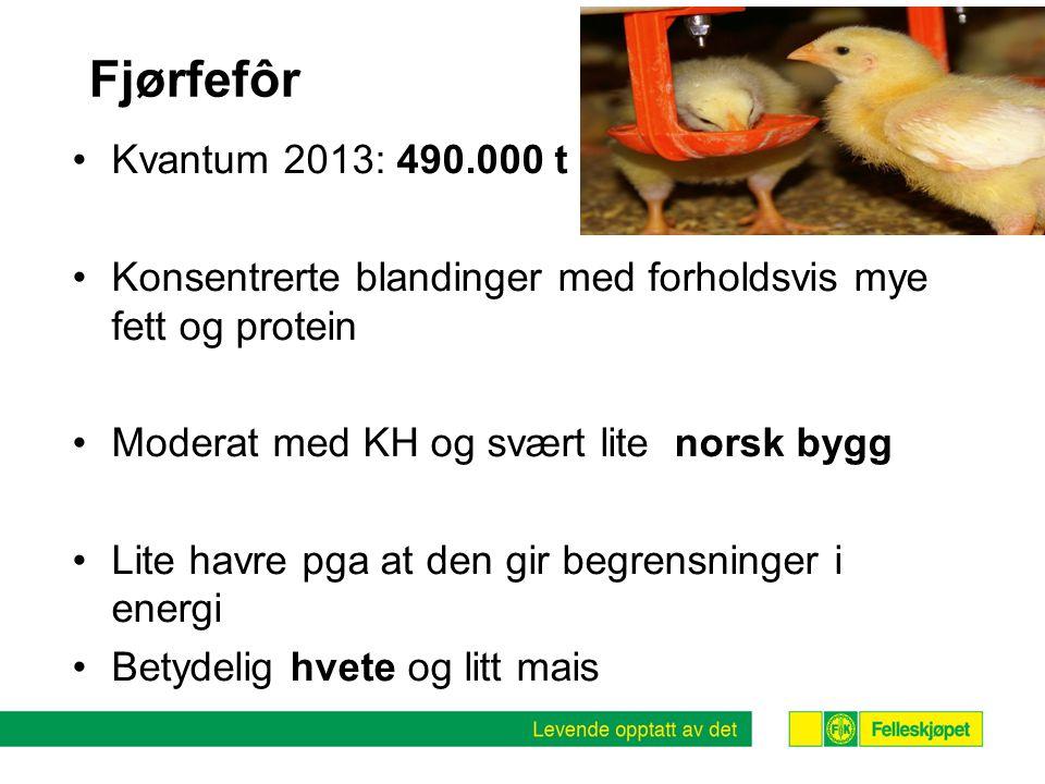 Fjørfefôr Kvantum 2013: 490.000 t. Konsentrerte blandinger med forholdsvis mye fett og protein. Moderat med KH og svært lite norsk bygg.