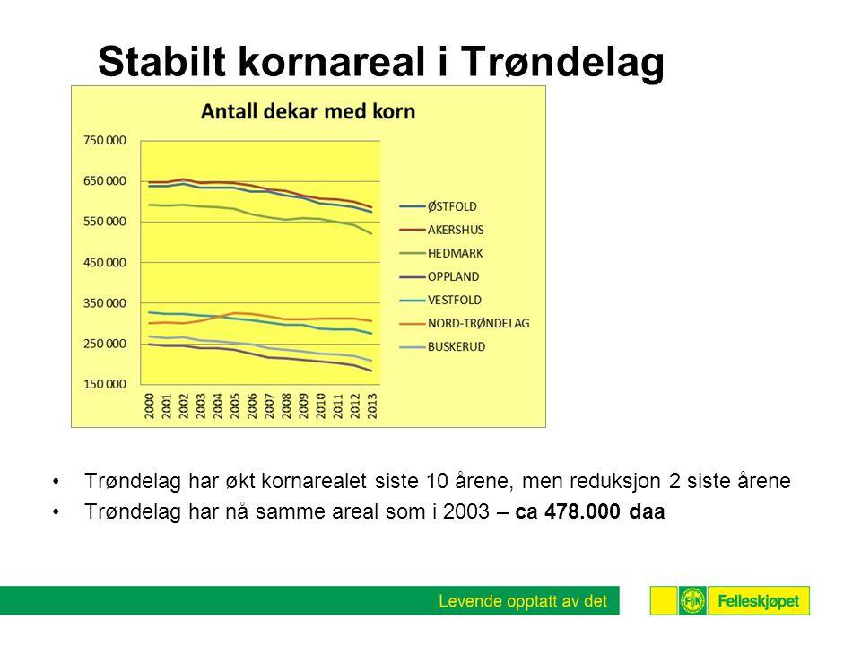 Stabilt kornareal i Trøndelag