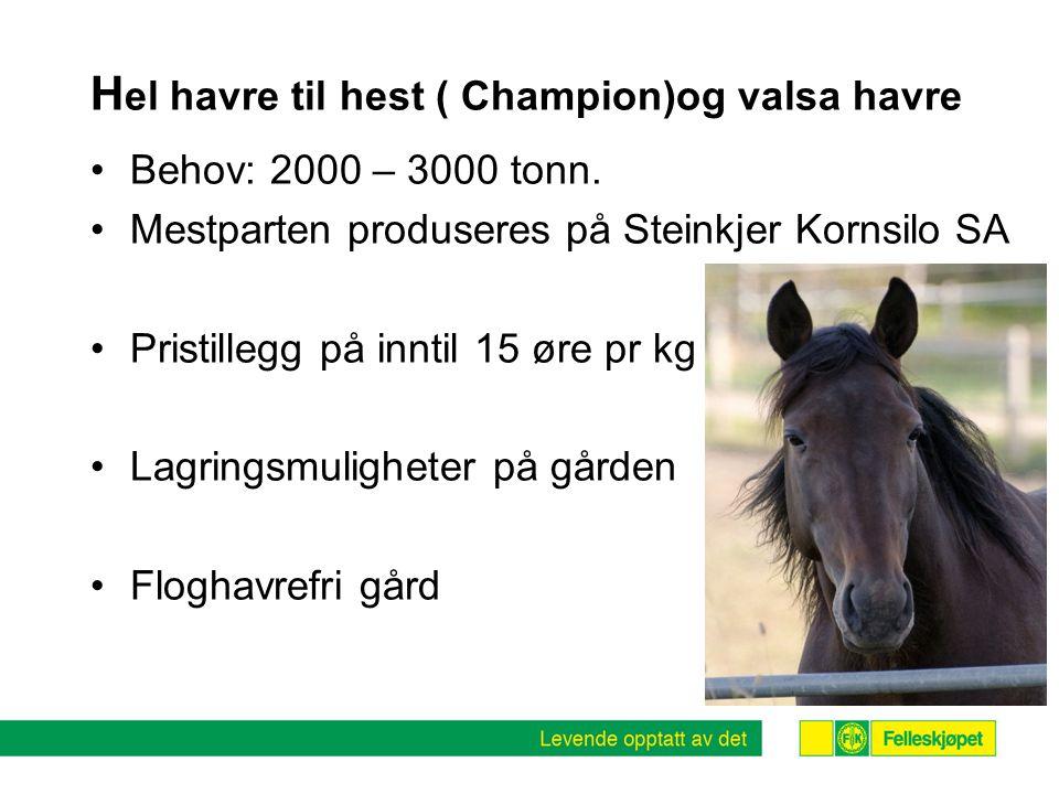Hel havre til hest ( Champion)og valsa havre