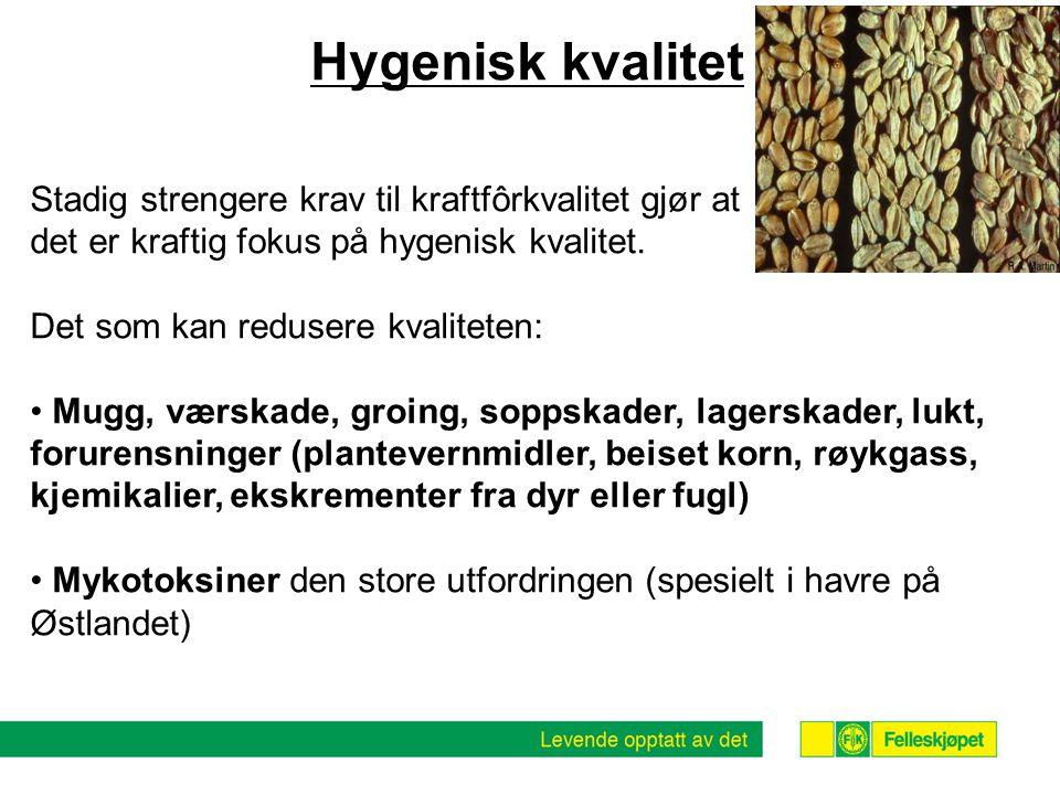 Hygenisk kvalitet Stadig strengere krav til kraftfôrkvalitet gjør at
