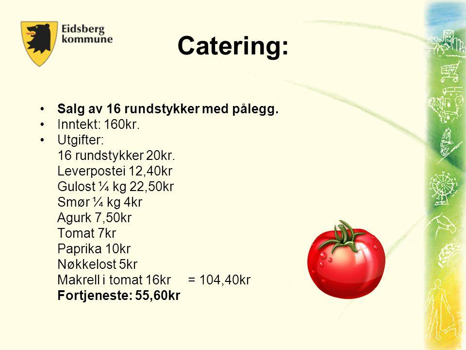 Catering: Salg av 16 rundstykker med pålegg. Inntekt: 160kr. Utgifter: