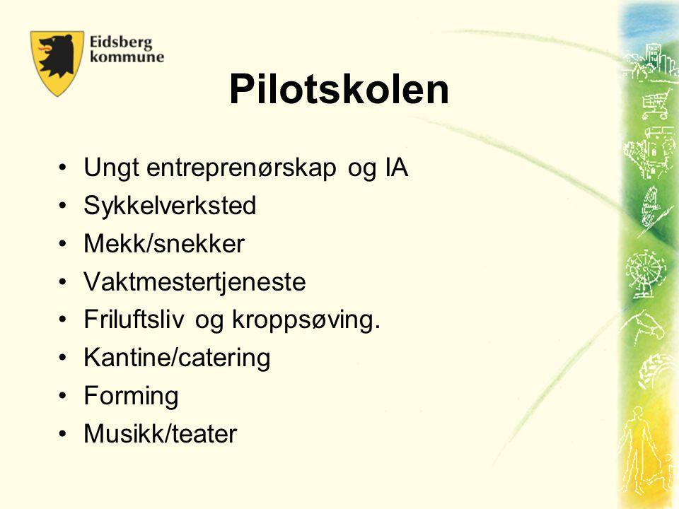 Pilotskolen Ungt entreprenørskap og IA Sykkelverksted Mekk/snekker