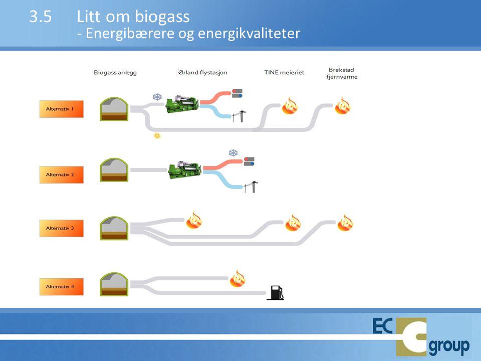 3.5 Litt om biogass - Energibærere og energikvaliteter