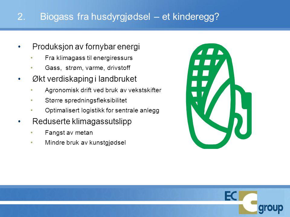2. Biogass fra husdyrgjødsel – et kinderegg