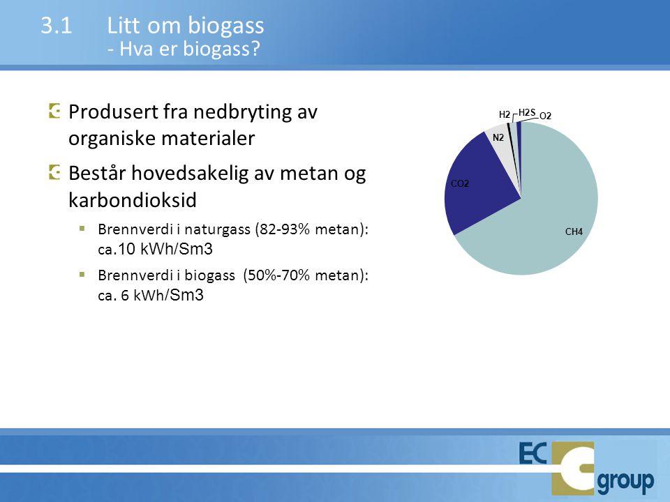 3.1 Litt om biogass - Hva er biogass