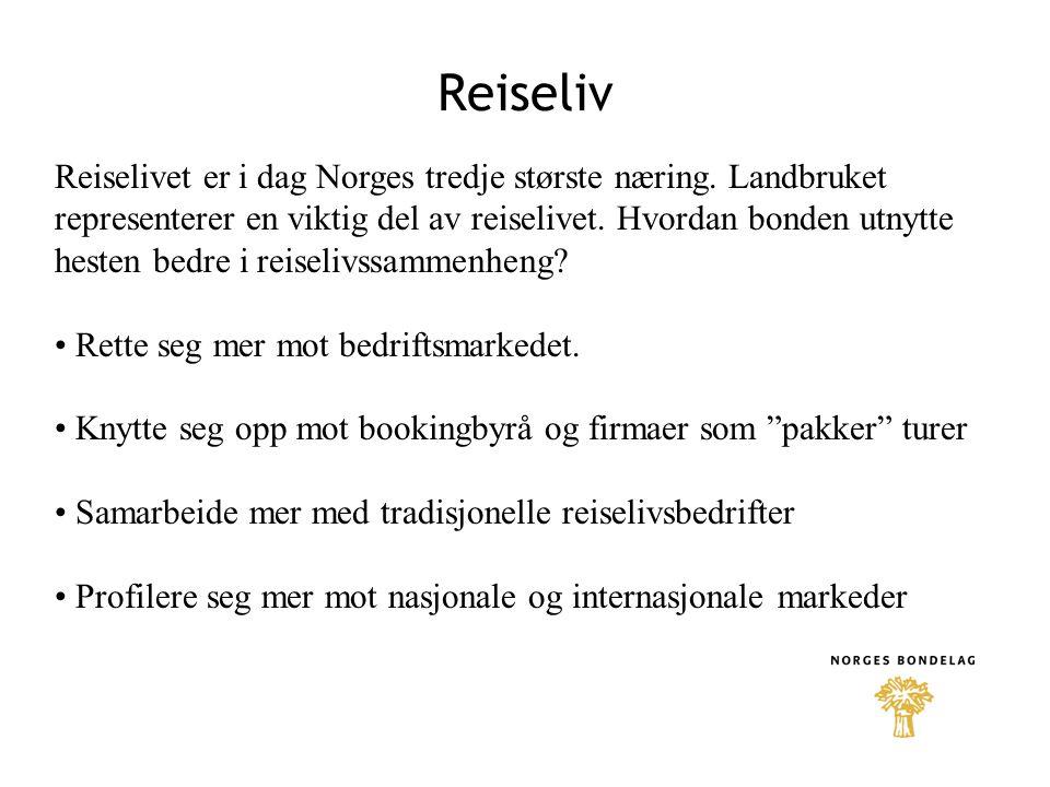10.09.2004 Reiseliv.