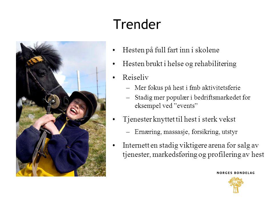 Trender Hesten på full fart inn i skolene