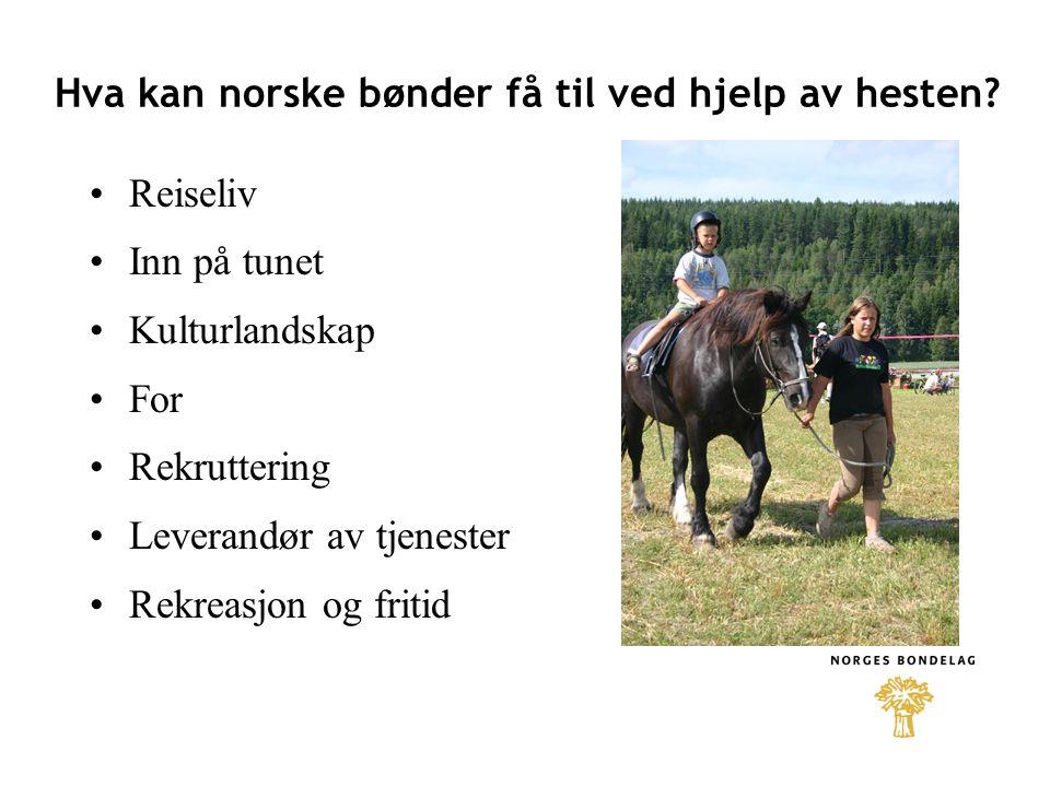 Hva kan norske bønder få til ved hjelp av hesten