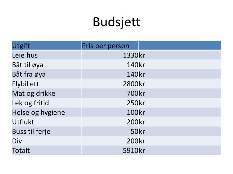 Budsjett Utgift Pris per person Leie hus 1330 kr Båt til øya 140