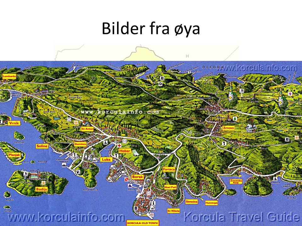 Bilder fra øya