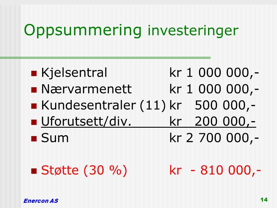 Oppsummering investeringer