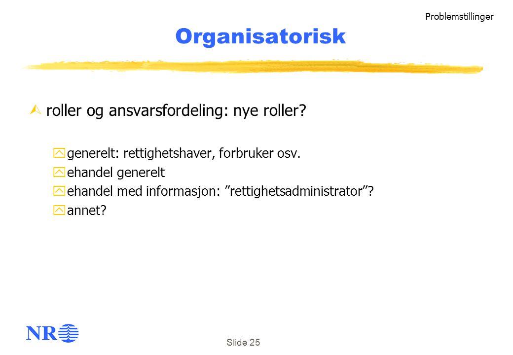Organisatorisk roller og ansvarsfordeling: nye roller