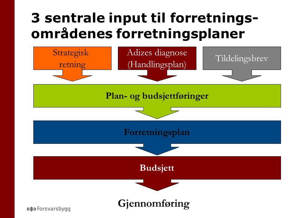 3 sentrale input til forretnings-områdenes forretningsplaner
