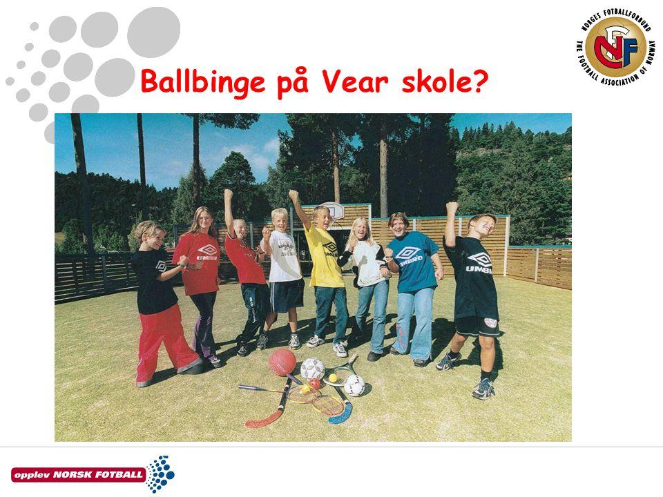 Ballbinge på Vear skole