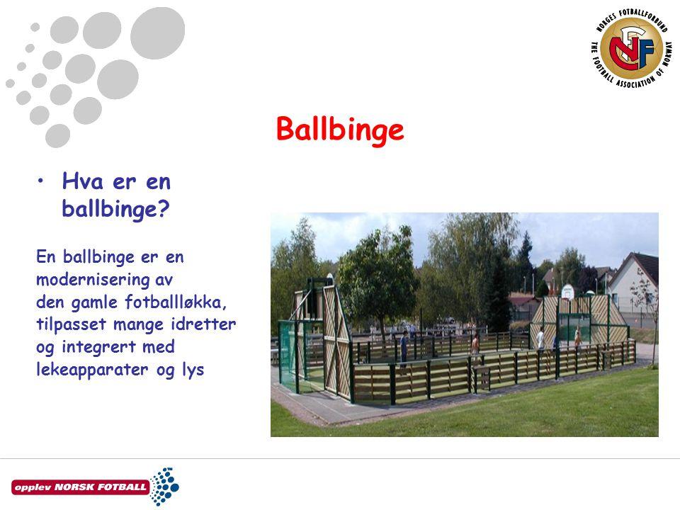 Ballbinge Hva er en ballbinge En ballbinge er en modernisering av