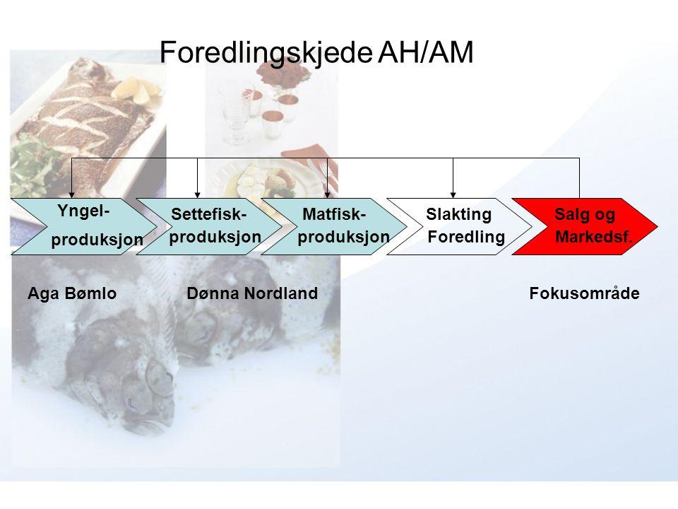 Foredlingskjede AH/AM