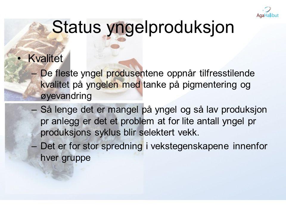 Status yngelproduksjon
