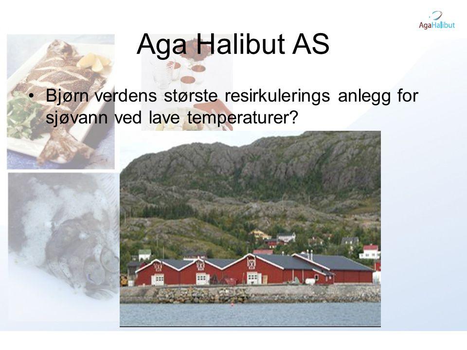 Aga Halibut AS Bjørn verdens største resirkulerings anlegg for sjøvann ved lave temperaturer