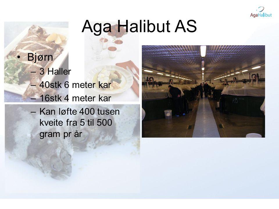Aga Halibut AS Bjørn 3 Haller 40stk 6 meter kar 16stk 4 meter kar