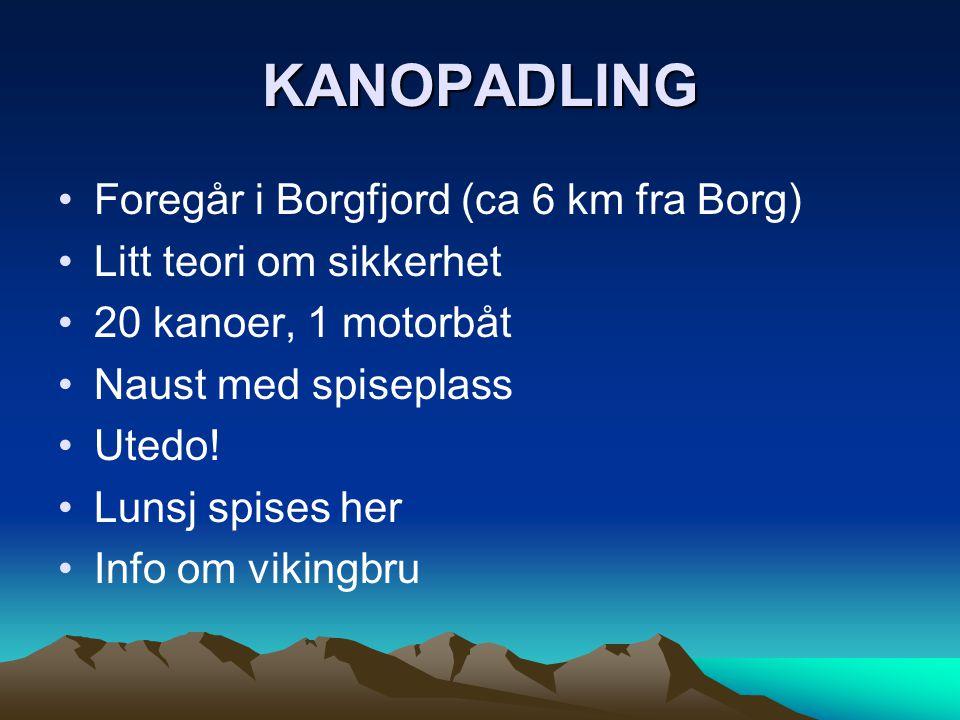 KANOPADLING Foregår i Borgfjord (ca 6 km fra Borg)
