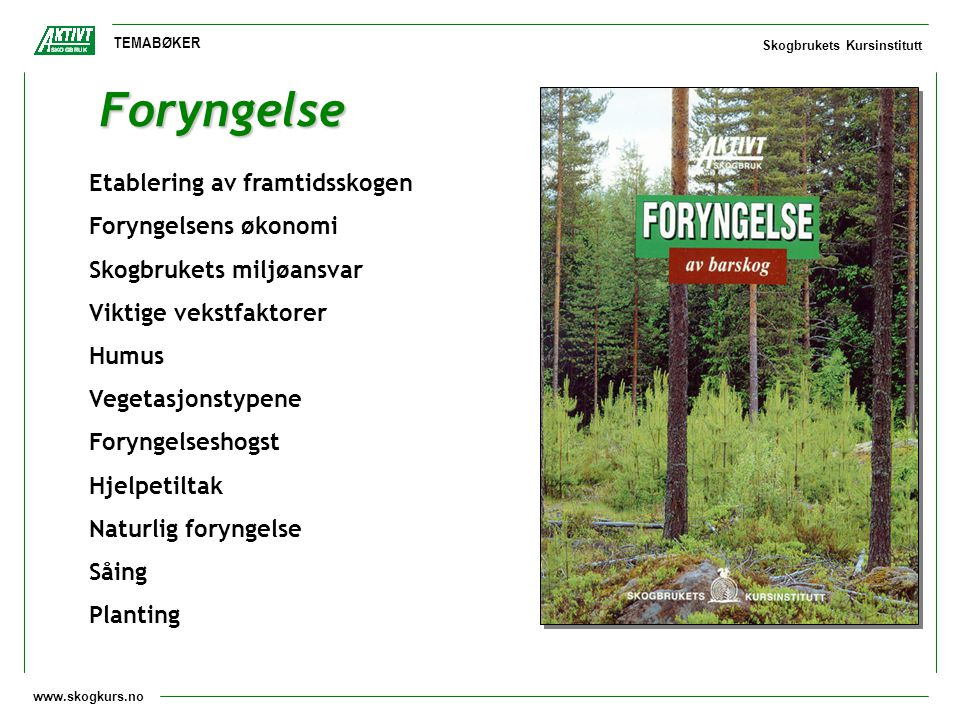 Foryngelse Etablering av framtidsskogen Foryngelsens økonomi