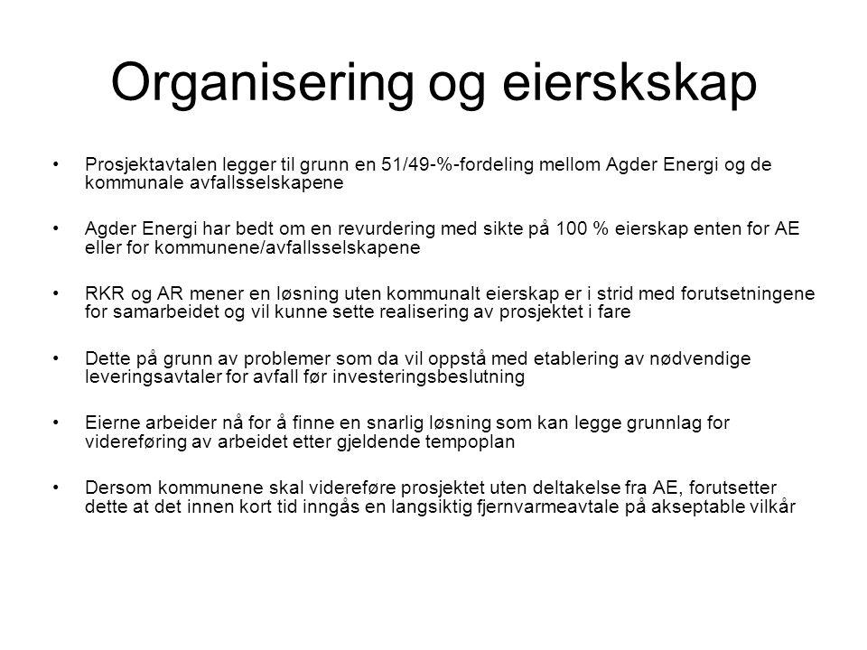 Organisering og eierskskap