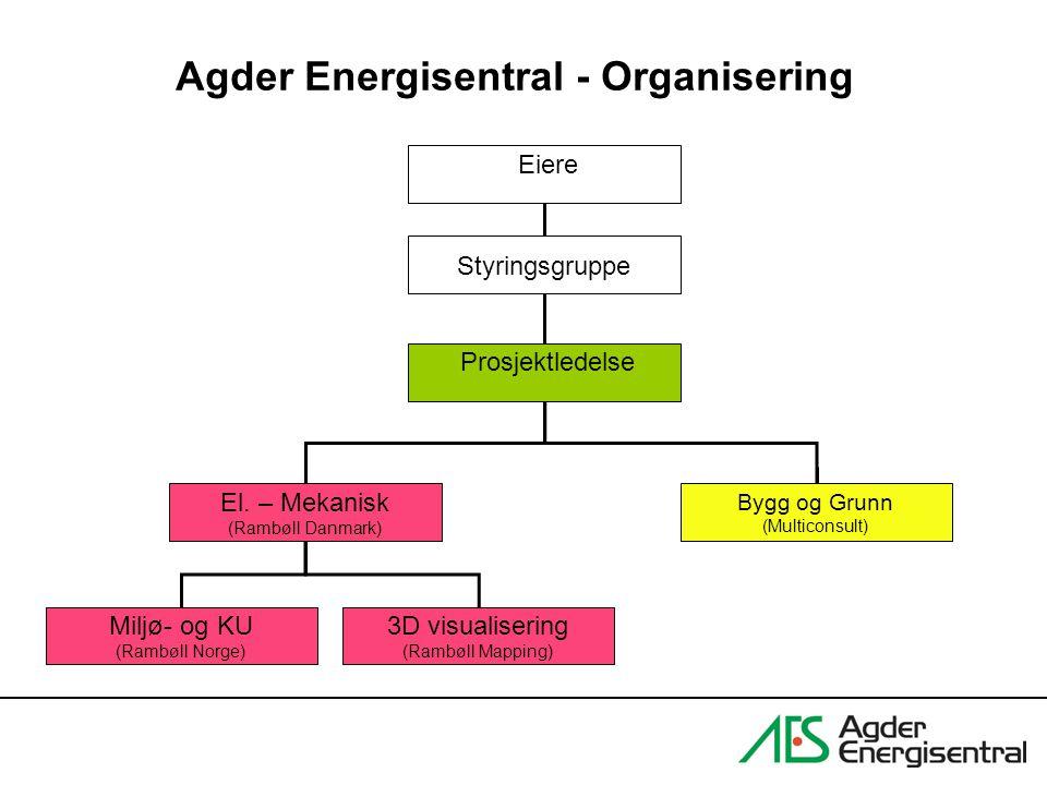 Agder Energisentral - Organisering
