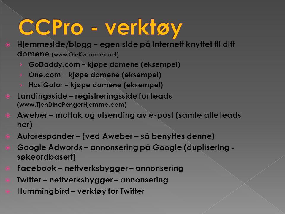 CCPro - verktøy Hjemmeside/blogg – egen side på internett knyttet til ditt domene (www.OleKvammen.net)