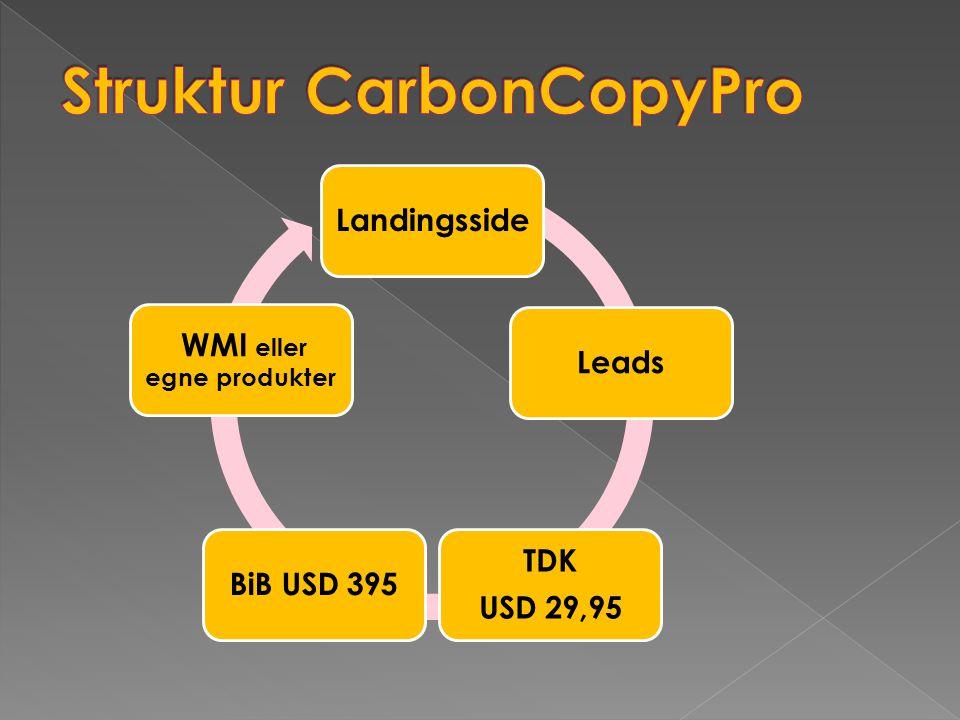 Struktur CarbonCopyPro