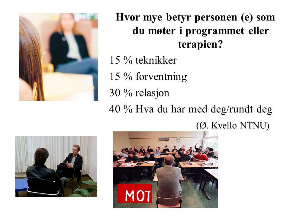 Hvor mye betyr personen (e) som du møter i programmet eller terapien