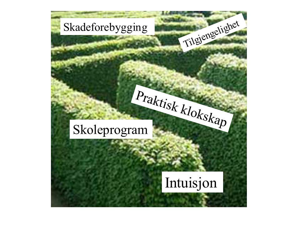 Intuisjon Praktisk klokskap Skoleprogram Skadeforebygging