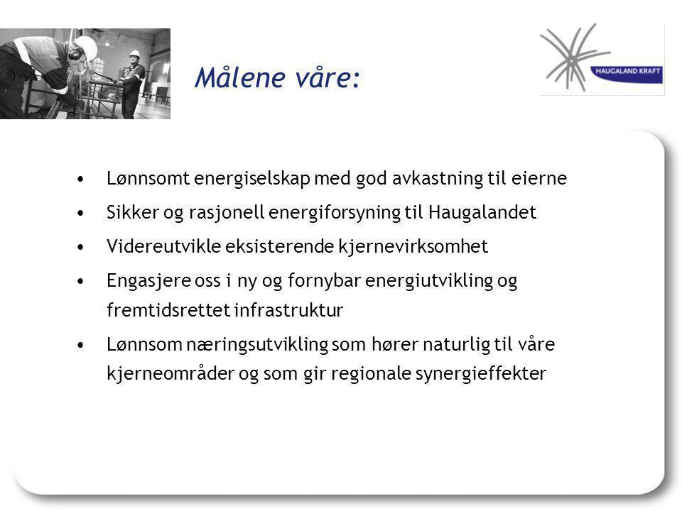 Målene våre: Lønnsomt energiselskap med god avkastning til eierne