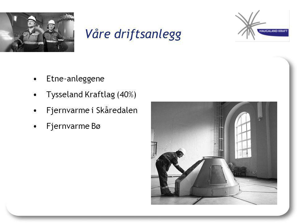 Våre driftsanlegg • Etne-anleggene • Tysseland Kraftlag (40%)