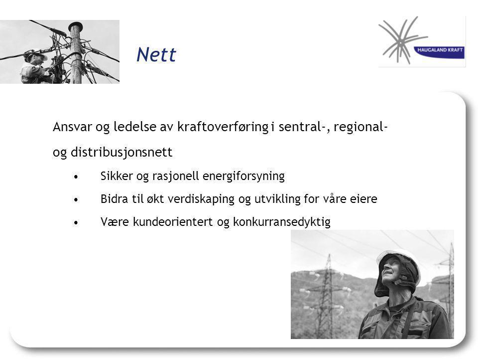 Nett Ansvar og ledelse av kraftoverføring i sentral-, regional-