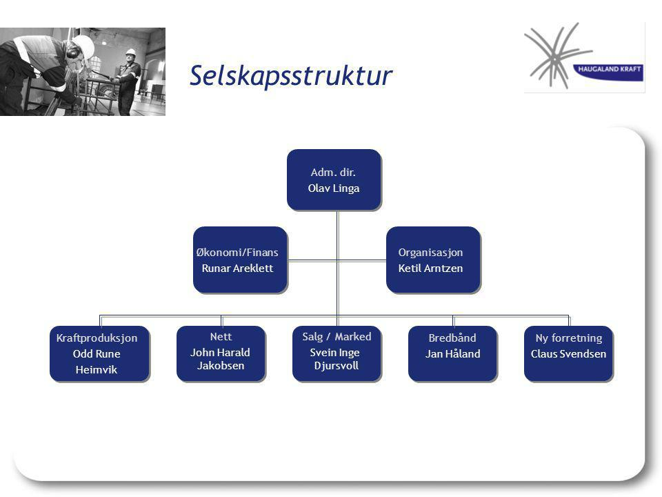 Selskapsstruktur Adm. dir. Olav Linga Organisasjon Ketil Arntzen