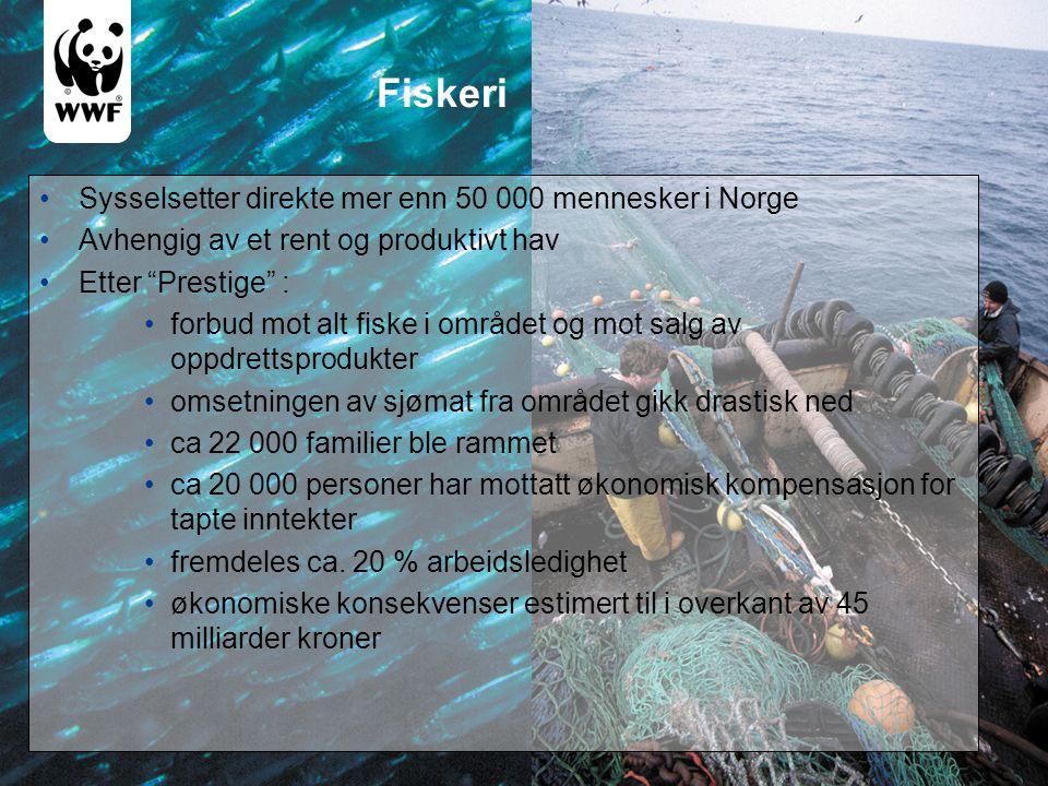 Fiskeri Sysselsetter direkte mer enn 50 000 mennesker i Norge