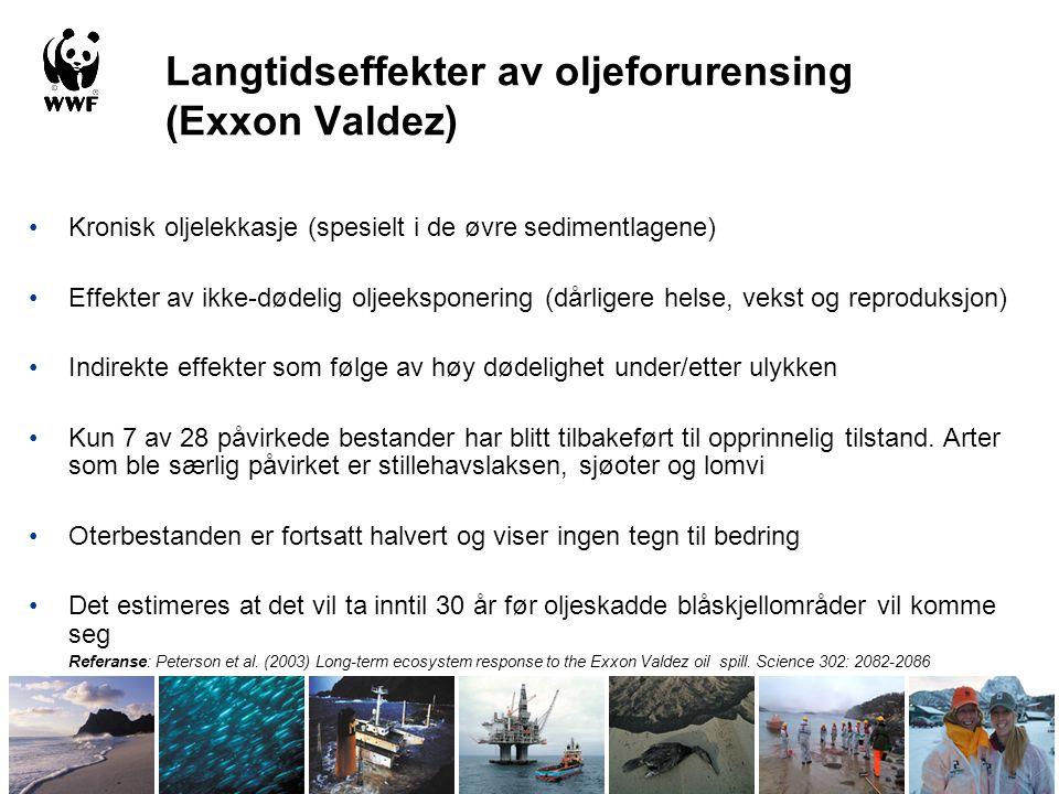Langtidseffekter av oljeforurensing (Exxon Valdez)