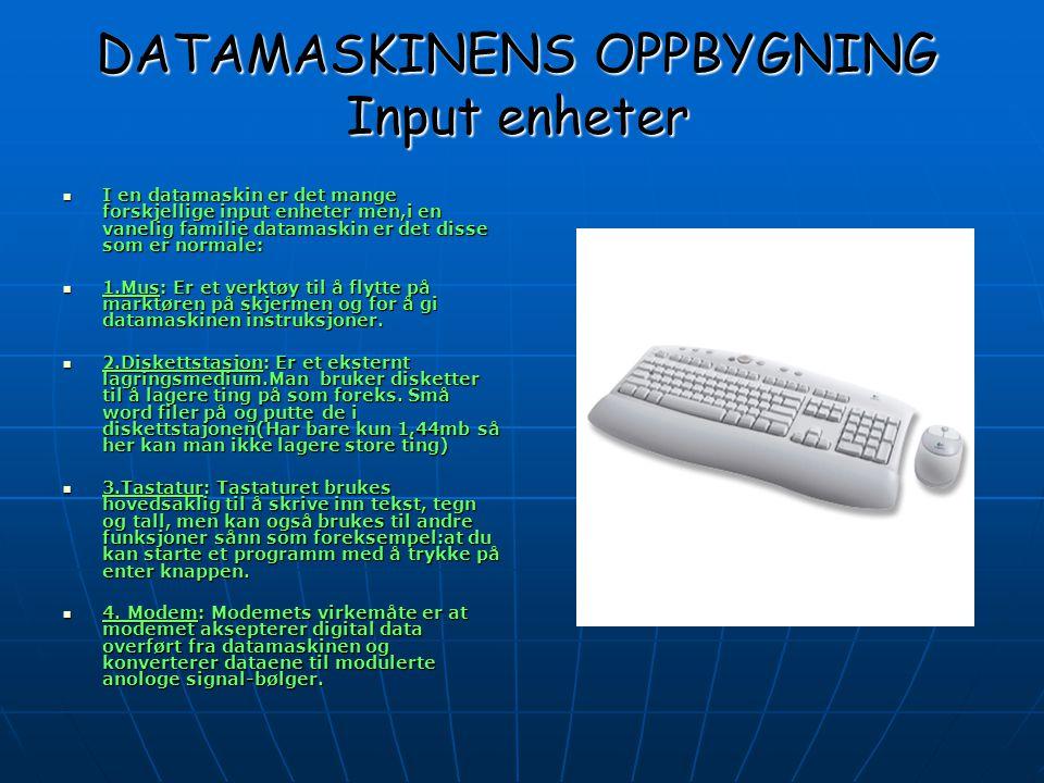 DATAMASKINENS OPPBYGNING Input enheter