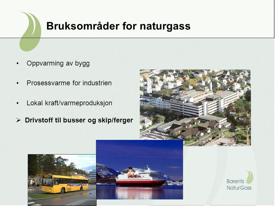 Bruksområder for naturgass