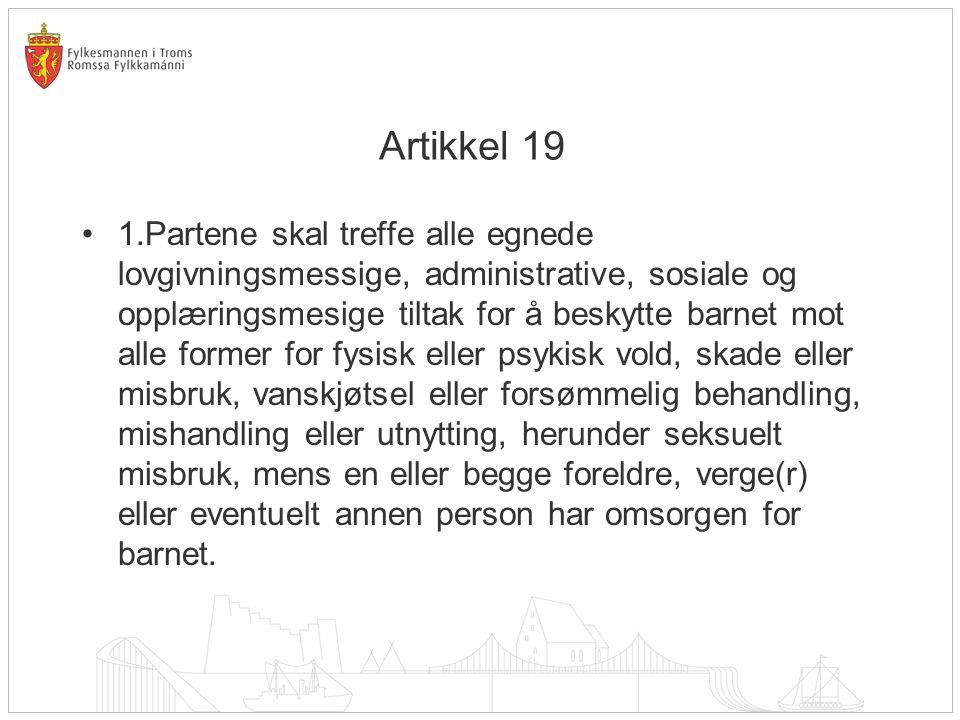 Artikkel 19