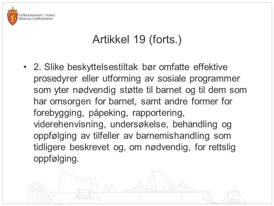 Artikkel 19 (forts.)