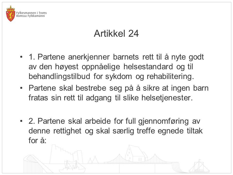 Artikkel 24