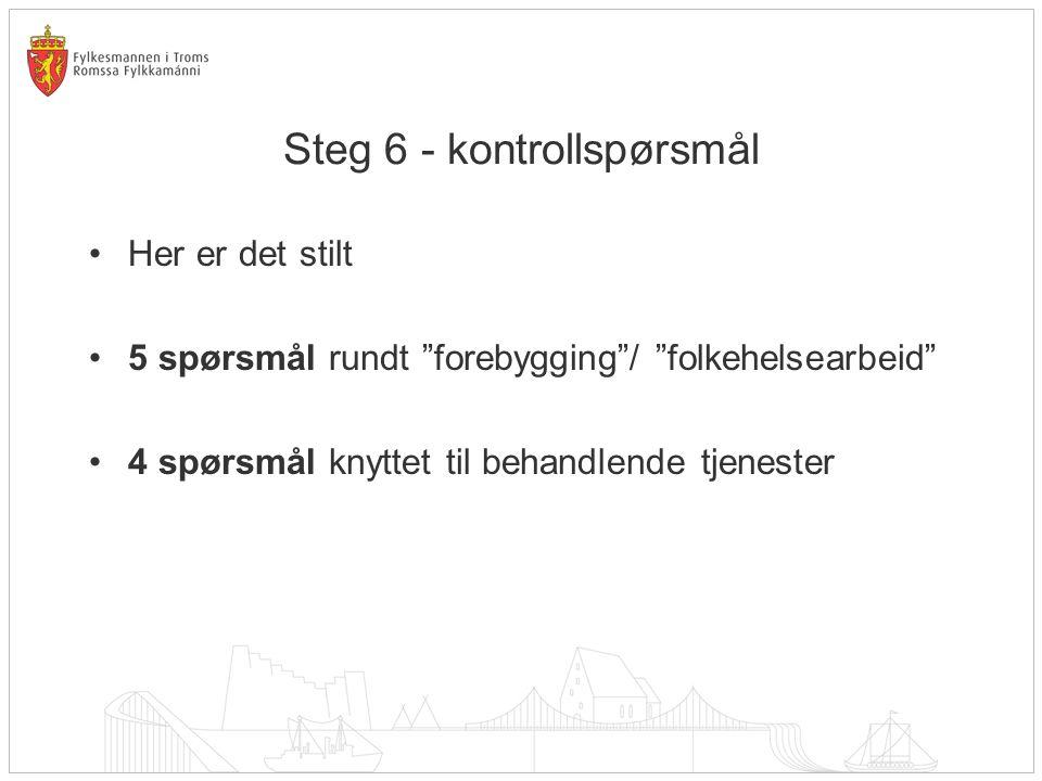 Steg 6 - kontrollspørsmål