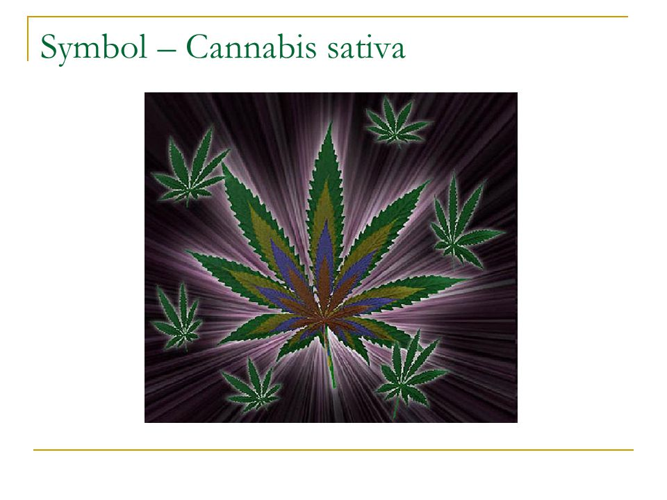 Symbol – Cannabis sativa