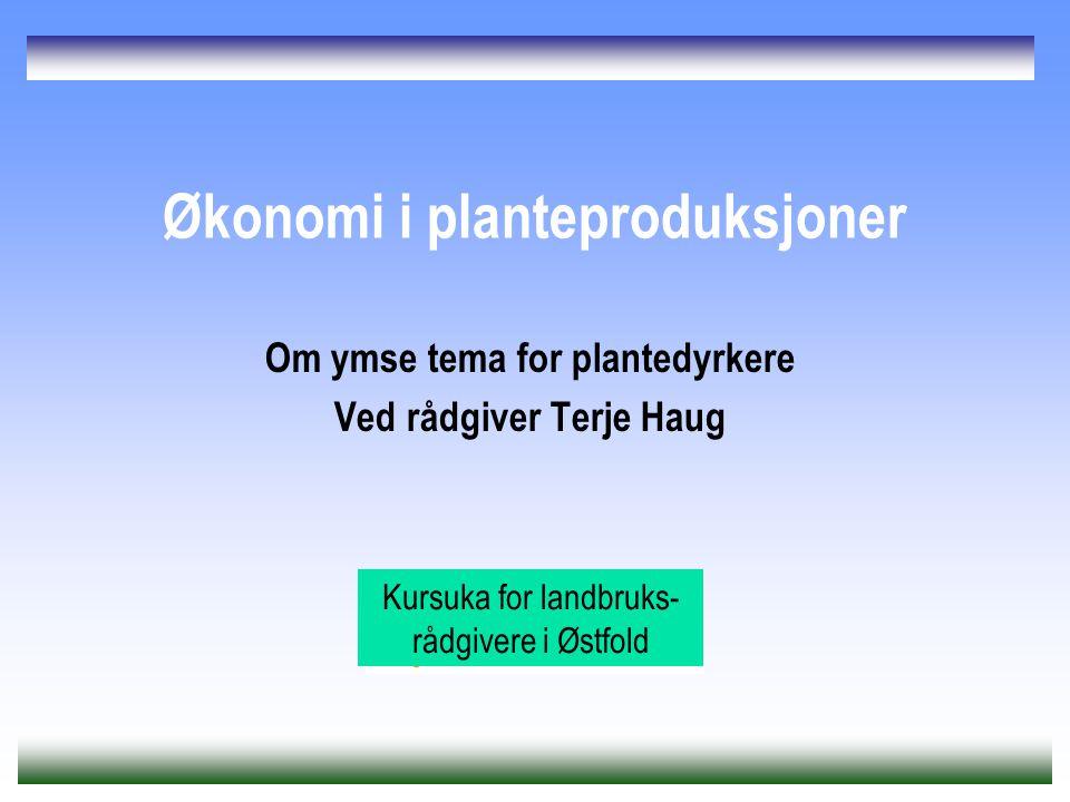 Økonomi i planteproduksjoner